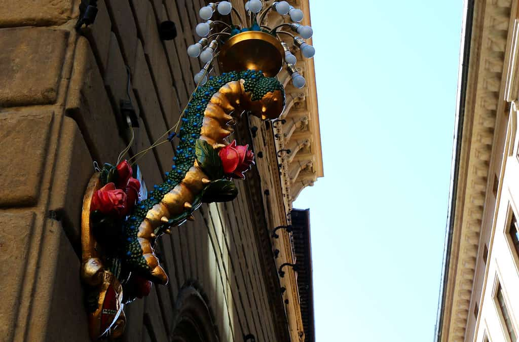 Florence - July 2014