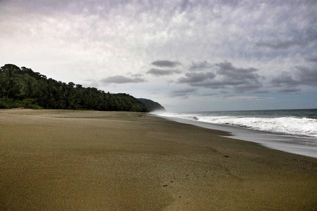 Osa Peninsula - Aug 2014