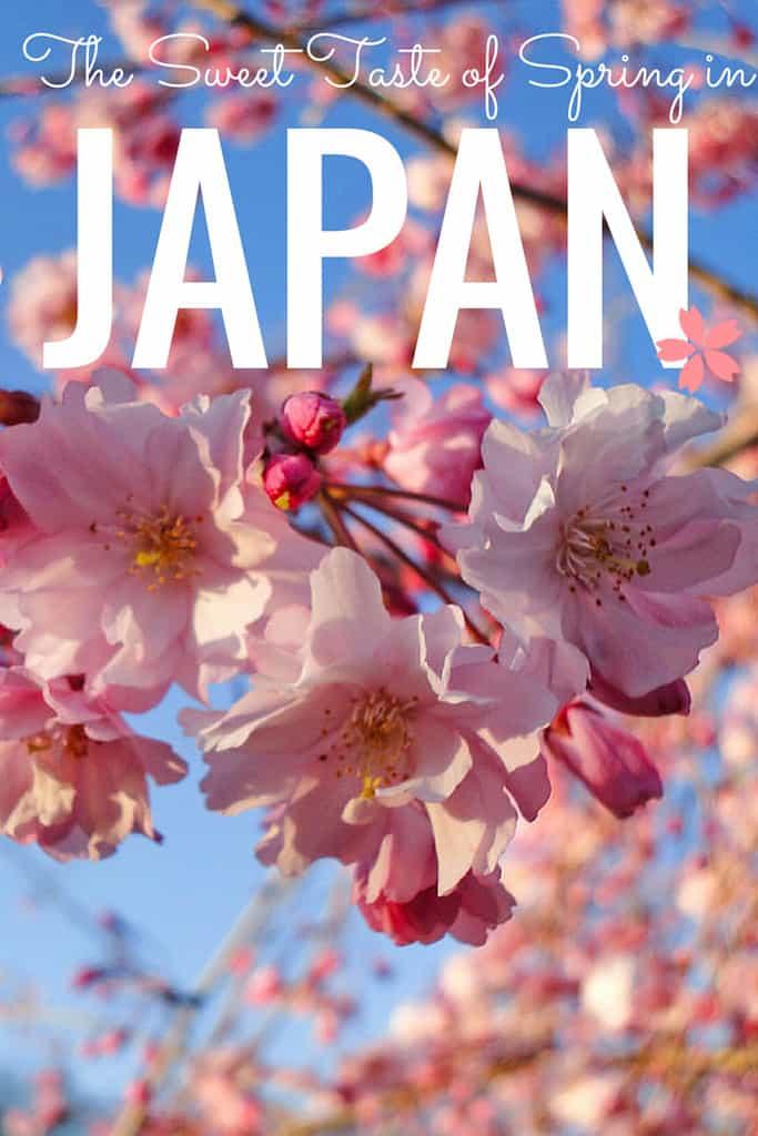 sweet-japan-2
