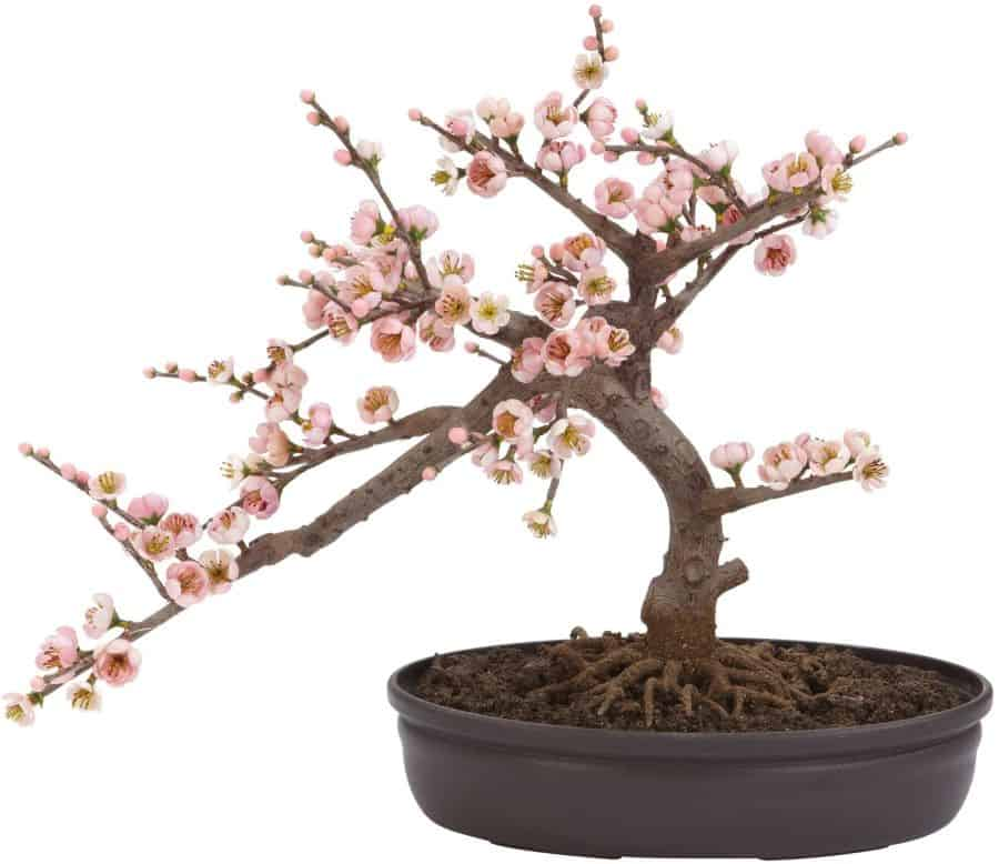 Nearly Natural Japanese Cherry Blossom Decor