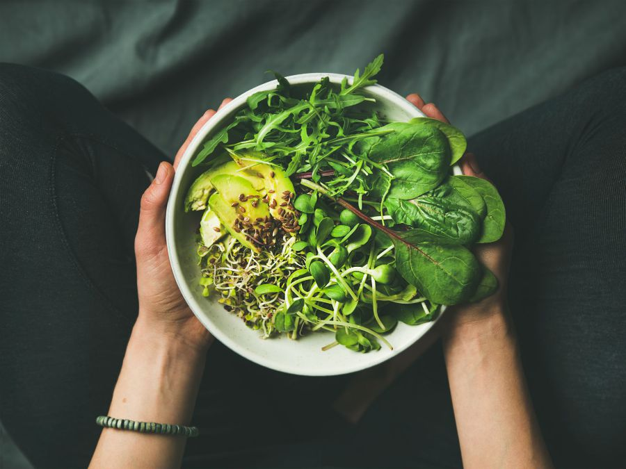 Vegan Weight Loss 1 Month Challenge - Vegan Diet Meal Plan reviews