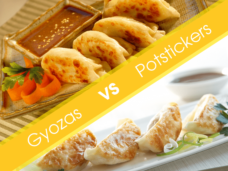 What Is the Difference Between Gyoza Vs Potsticker?